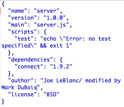 NodeJS Server Package