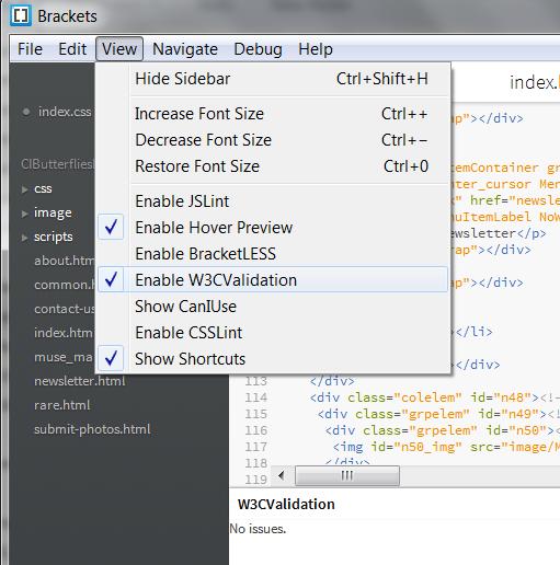 W3C validation extension