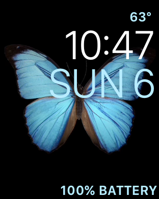 Apple Watch Butterflies \u2013 Mark DuBois Weblog