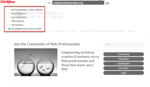 Screen capture showing WebProfessionals site appearance for those with no color receptors using ColorFuzz site