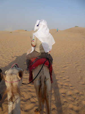 View from my camel