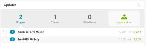 Managing updates on multiple WordPress sites.