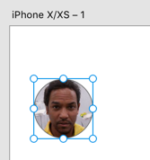 Plugin has populated the circle shape with the photo of a random individual.